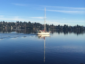 A boat drifts by the arboretum on its way from Lake Union to Lake Washington.