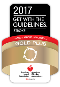 Stroke honor roll gold plus award